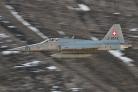 Swiss Air Force F-5E Tiger II