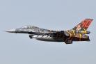 BAF F-16AM FA-87 60 years 31 Tigers