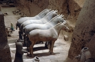 Horses of the Terracota Army